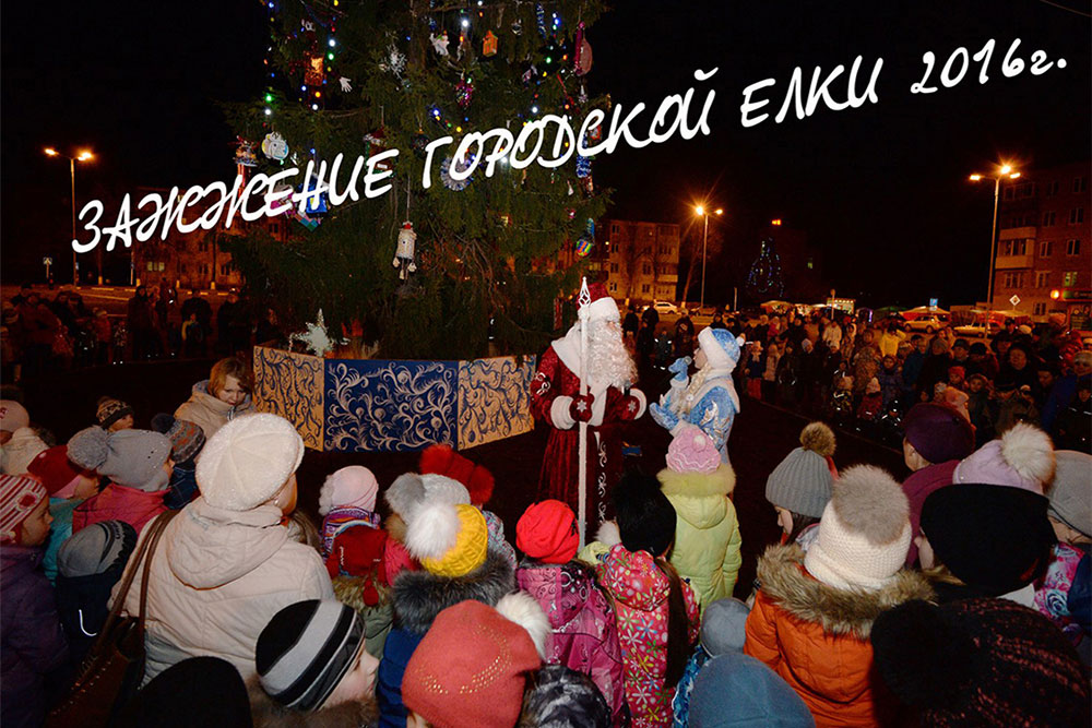 Новый год в Пересвете